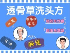 张景明:透骨草洗头方的功效与作用,用法与禁忌,头油,脱发,头屑